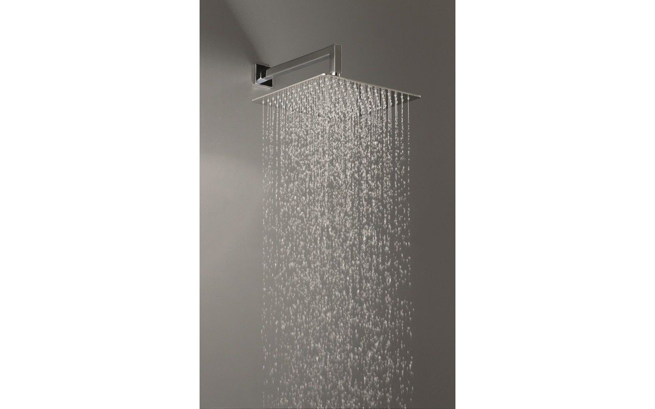 Spring SQ-250 Top-Mounted Shower Head picture № 0